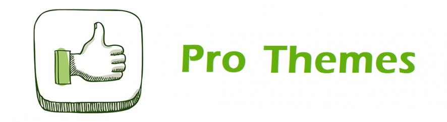 Advantage of Pro Themes