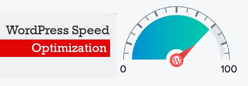Wordpress seo speed optimiztion